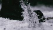 Trailers / Clips / Spots de Amanecer Part 2 - Página 4 0ea5c6215994629
