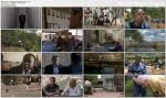 Ludob�jstwo Zbrodnia XX wieku / Worse than war (2010) PL.TVRip.XviD / Lektor PL