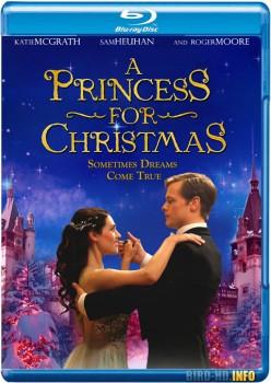 A Princess for Christmas 2011 m720p BluRay x264-BiRD