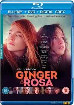 Ginger and Rosa 2012 m720p BluRay x264-BiRD