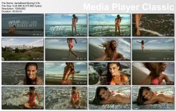 Nina Agdal - Aerie Beach Spring 2013