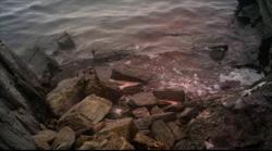 Lake Placid: Ostatni rozdzia³ / Lake Placid: The Final Chapter (2012)  PL.DVDRip.XviD.CiNEMAET-Smok  Lektor PL   +rmvb