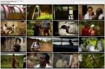 Dzikie Dzieci / Feral Children (2009)  PL.DVBRip.XviD / Lektor PL