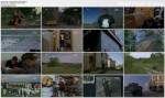 Problem komara i inne historie / The Mosquito Problem (2007) PL.DVBRip.XviD / Lektor PL