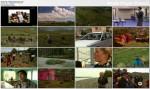 Architekci przemian / Architects of change (2009)  PL.DVBRip.XviD / Lektor PL