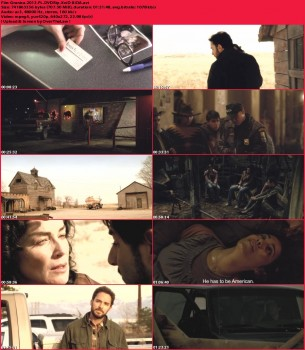 Granica / The Mule / Border Run (2012) PL.DVDRip.XviD-BiDA / Lektor PL