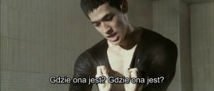 The Beast (2011) PLSUBBED.DVDRip.XviD-GHW / Napisy PL + x264