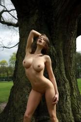 http://thumbnails106.imagebam.com/26174/015339261730007.jpg