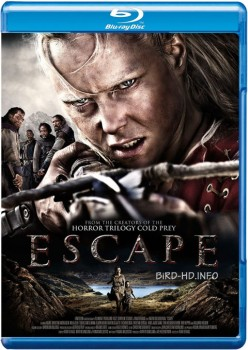 Escape 2012 m720p BluRay x264-BiRD