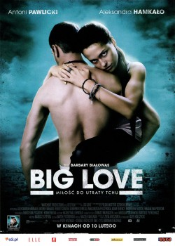 Przód ulotki filmu 'Big Love'