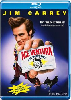 Ace Ventura: Pet Detective 1994 m720p BluRay x264-BiRD
