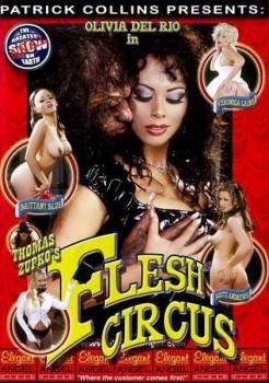 forums xxx full movies olivia del rio erica bella full filmography .