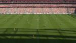 Estádio da Luz Turfs by chrismas