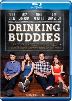 Drinking Buddies 2013 m720p BluRay x264-BiRD