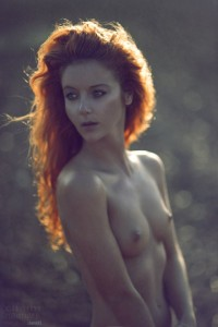 http://thumbnails106.imagebam.com/40226/b8b37e402257135.jpg
