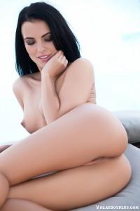 http://thumbnails106.imagebam.com/40917/59978c409162402.jpg